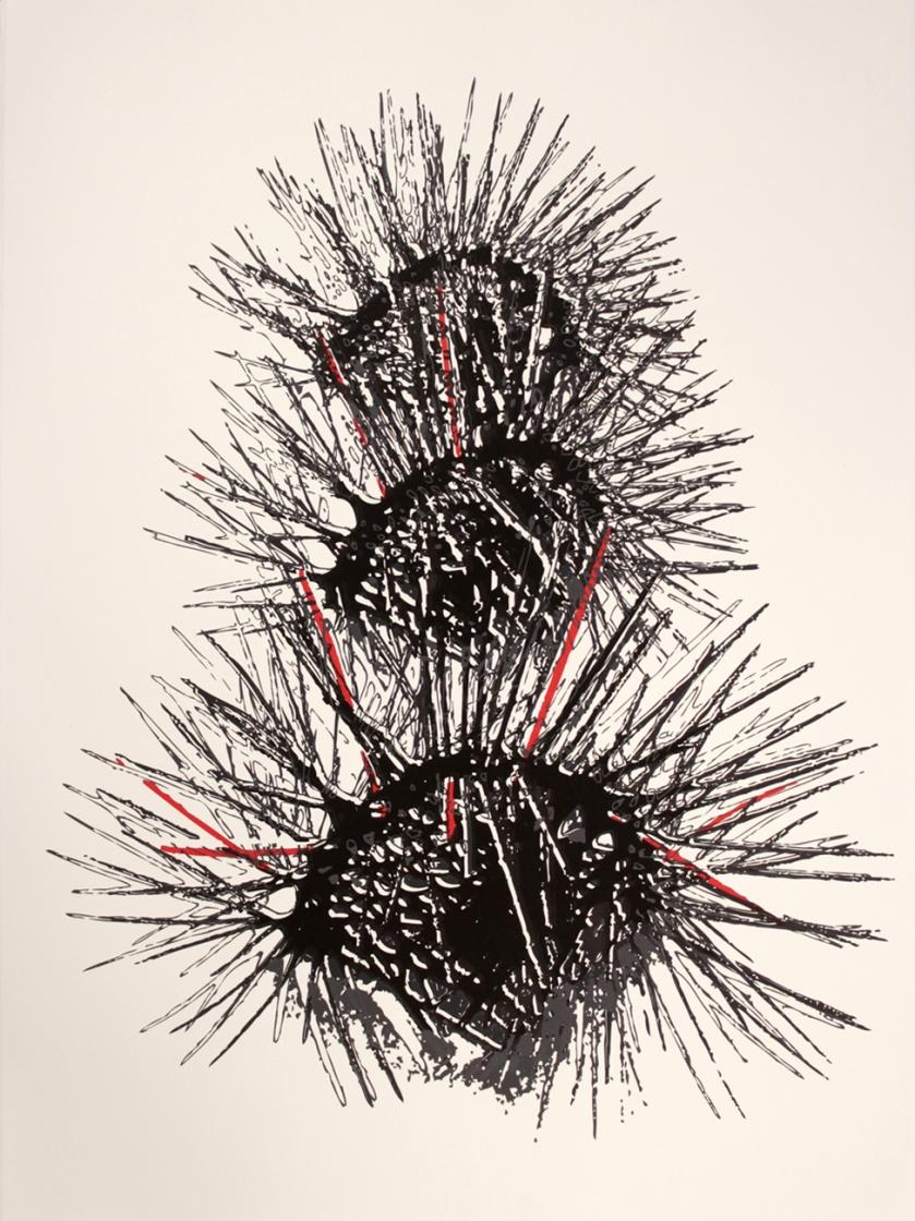 Mutation (2012) Screenprint on paper 76 x 56 cm