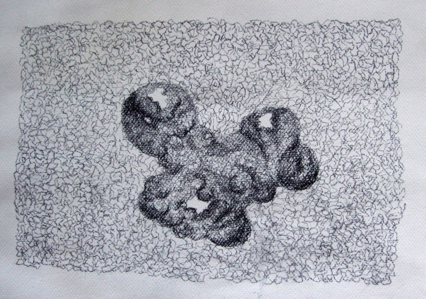 Organic Form I (2014) Conté drawing on paper 27 x 37.5 cm